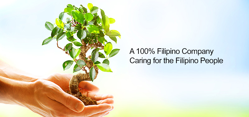 Small & Young Filipino Company